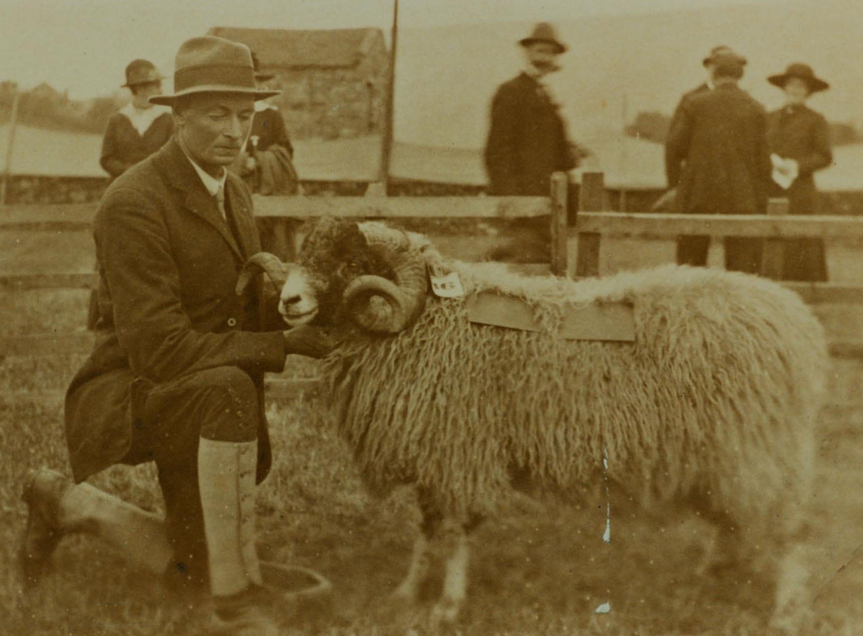 WHC and Yorkshire Film Archive collaborate on exhibition at Great Yorkshire Show 10 - 12 July 2018