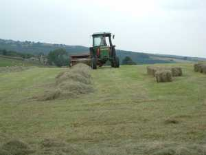 Haymaking in the Washburn Valley